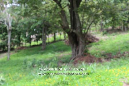 ESCAZU LOT FOR SALE, COSTA RICA LOTS FOR SALE IN ESCAZU, COSTA RICA REAL ESTATE ESCAZU LOTS SALE