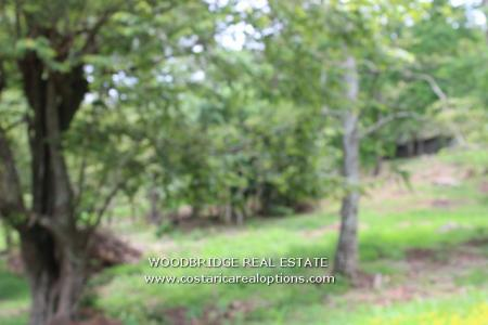 ESCAZU LOT FOR SALE, COSTA RICA ESCAZU LOTS FOR SALE, COSTA RICA MLS ESCAZU