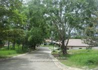 ESCAZU LOT FOR SALE, ESCAZU LOTS, COSTA RICA ESCAZU LOT FOR SALE, COSTA RICA MLS LOTS FOR SALE ESCAZU